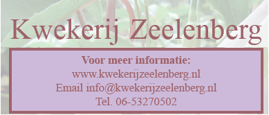Zeelenberg